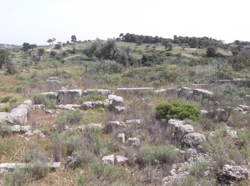 ergasthri 1