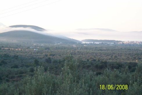 xomaterh2008